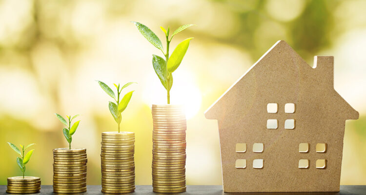 Save money on your rent and lead a burden-free life